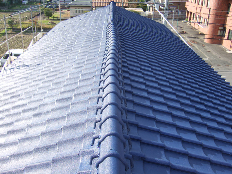 example-roof_002_before