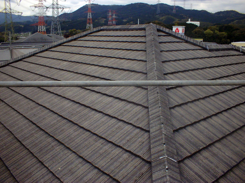 example-roof_008_before
