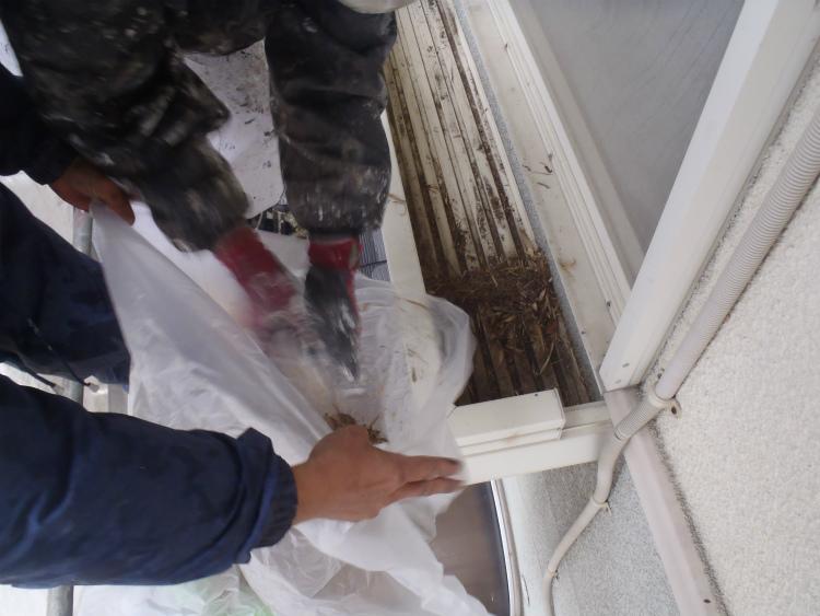 高圧洗浄 清掃