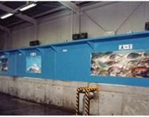 MR式パイプレス一体形活魚水槽