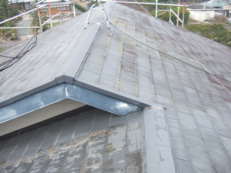 example-roof_004_before