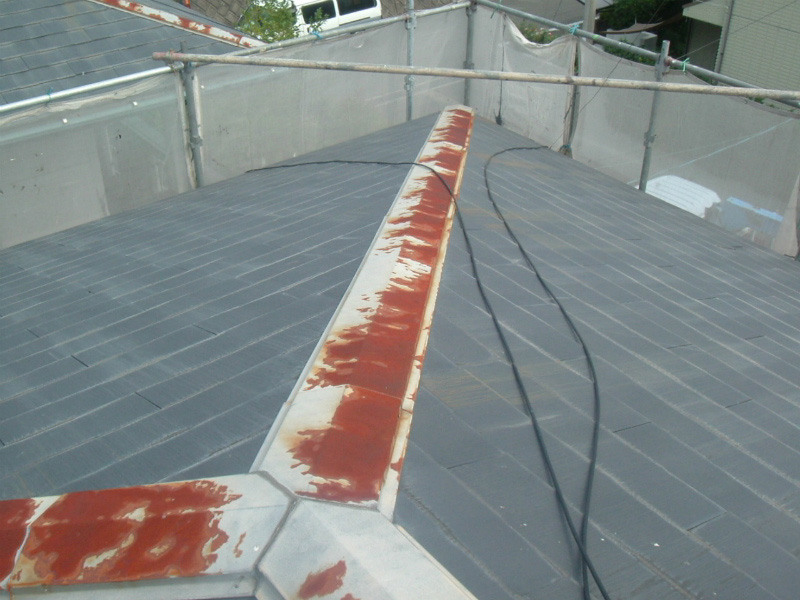 example-roof_011_before
