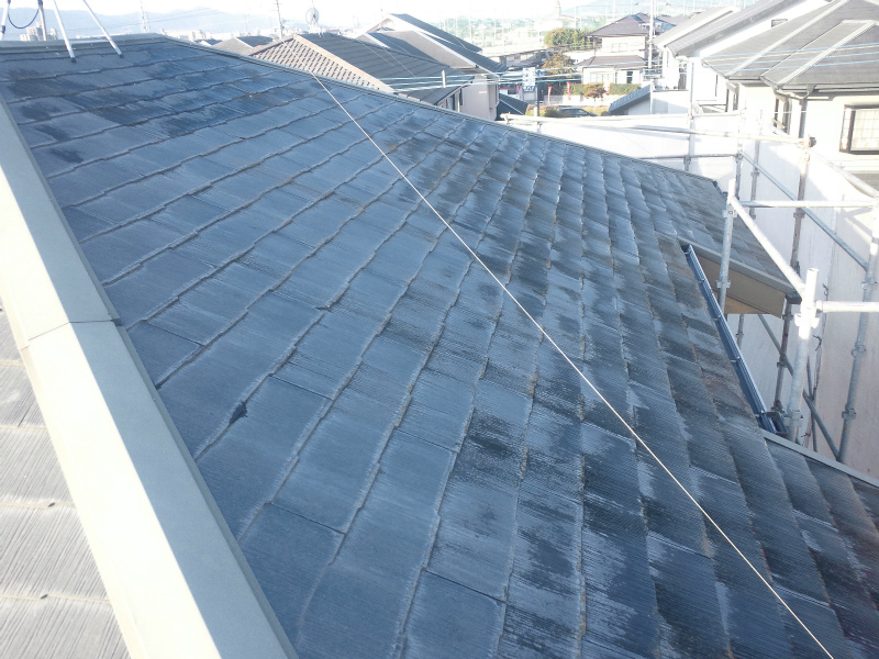 example-roof_013_before