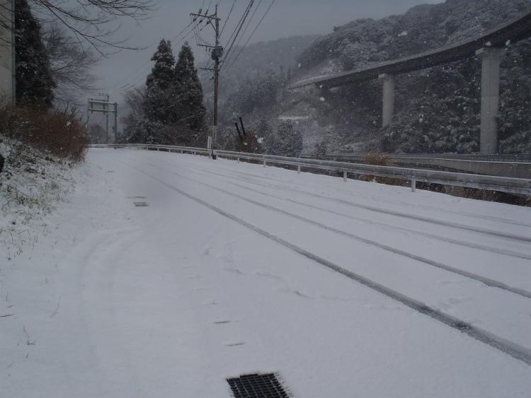 1/21 雪